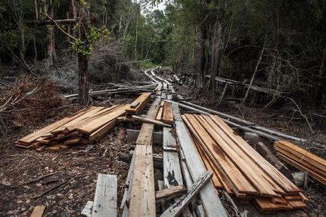 Báo động về tình trạng nhân loại lạm dụng tài nguyên thiên nhiên