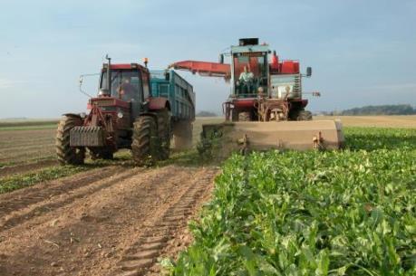 Hà Nội cơ giới hóa trong nông nghiệp còn thấp