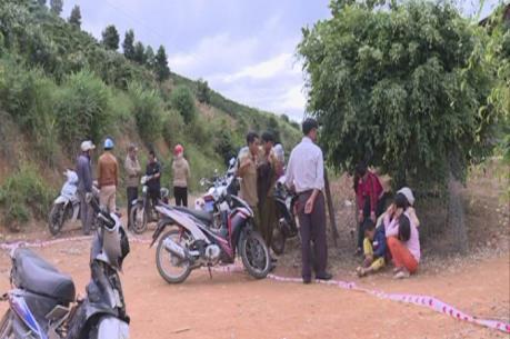 Khởi tố bị can, khởi tố vụ án truy sát cán bộ quản lý bảo vệ rừng ở Lâm Đồng