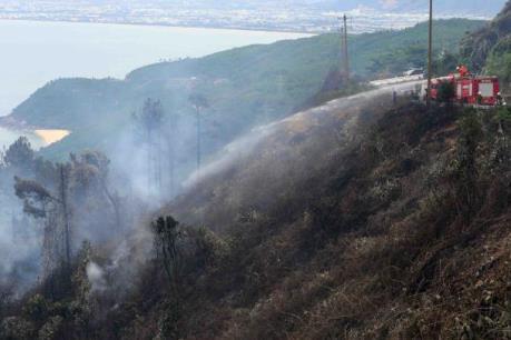 7 khu vực rừng có khả năng cháy lớn ở Đồng Tháp