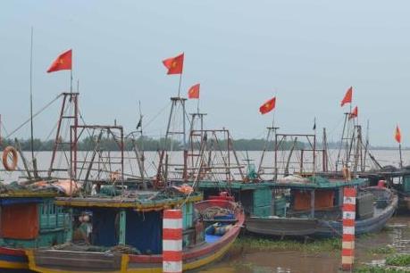 Cơn bão số 3:  Từ 17h ngày 18/8, Hải Phòng thực hiện lệnh cấm biển