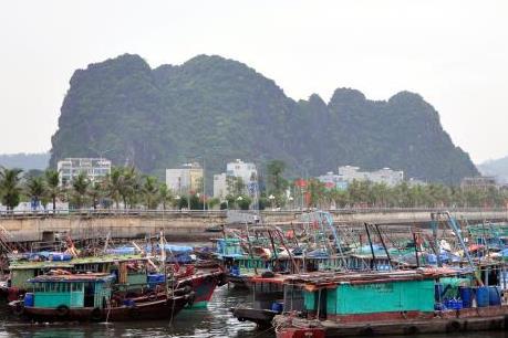 Ứng phó với bão số 7: Quảng Ninh thành lập 7 đoàn công tác chỉ đạo chống bão