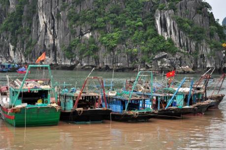 Tin bão số 3: Quảng Ninh hoàn thành gọi tàu bè về neo đậu