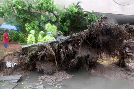 Thống kê mới nhất về thiệt hại do bão số 3 gây ra