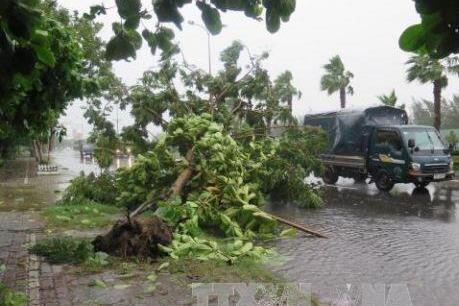 Bão số 3 đi vào đất liền các tỉnh Hải Phòng và Thái Bình, giật cấp 10-12