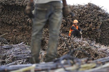 Trung Quốc: Nhập khẩu đường trong tháng Bảy giảm gần 14%