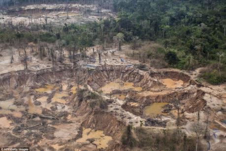 Tái diễn khai thác vàng trái phép tại huyện Tây Trà, Quảng Ngãi