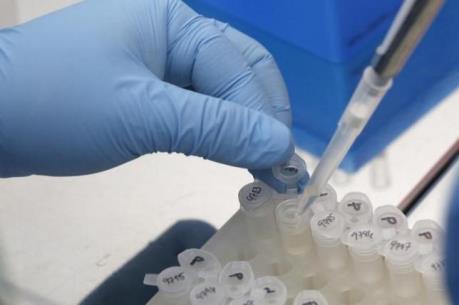 Sẽ công bố lô vắc xin chống Zika trong tháng 10