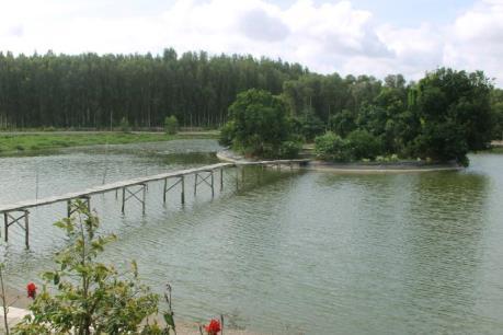 Rừng tràm nước phèn Hậu Giang: Khu du lịch sinh thái lớn nhất Đồng bằng sông Cửu Long