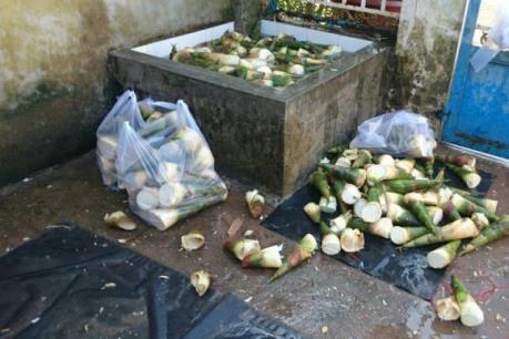 Ngăn hàng trăm kg măng ngâm hóa chất tuồn vào Tp Hồ Chí Minh