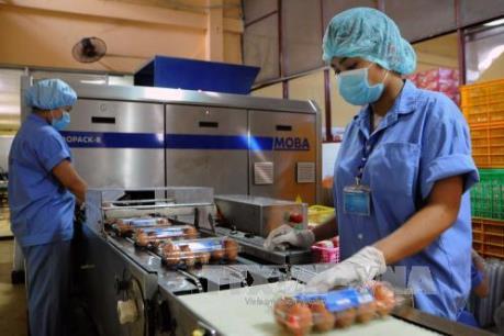 Áp dụng hạn ngạch thuế quan nhập khẩu thuốc lá và trứng gia cầm
