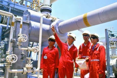 Chuẩn bị các phương án vận hành hệ thống điện khi nguồn khí Nam Côn Sơn giảm và ngừng