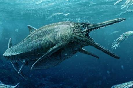 Quái thú biển thực sự tồn tại