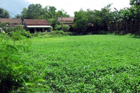 Liên tục xuất hiện động đất tại các huyện miền núi tỉnh Quảng Nam