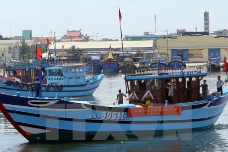 Ngư dân Đà Nẵng bị ảnh hưởng sự cố môi trường biển miền Trung được hỗ trợ gần 1,9 tỷ đồng