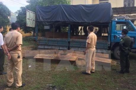 Hà Nội: Liên tiếp phát hiện các vụ vận chuyển gỗ lậu