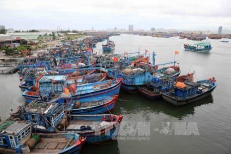 Dự báo thời tiết: Bão số 5 gây gió giật cấp 17 trên biển Đông