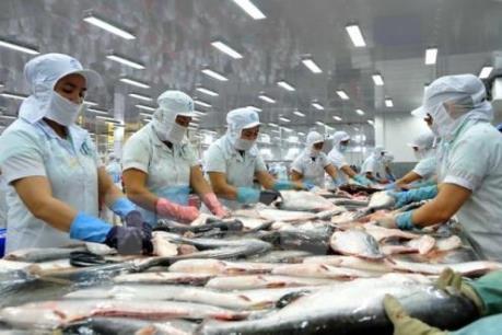 Quy định đối với xuất khẩu cá bộ Siluriformes vào Hoa Kỳ