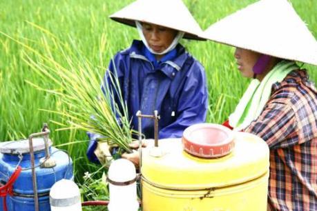 Nhiều thủ đoạn tinh vi trong kinh doanh thuốc bảo vệ thực vật