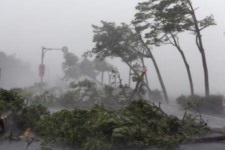 Bão số 7 giật cấp 10 trên bờ biển Bắc Quảng Ninh, siêu bão HAIMA sẽ tiến vào Biển Đông