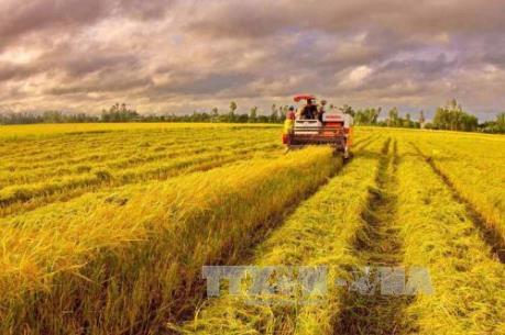 Còn dư địa để nông nghiệp bù đắp cho tăng trưởng âm