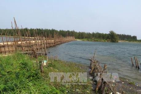 Chấp thuận cho Quảng Ngãi xây đê kè ngăn mặn sông Trà Bồng
