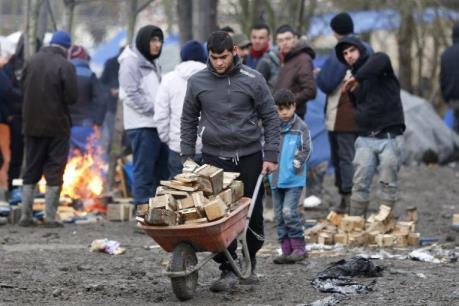 EU thiếu nhiều lao động nếu không có chính sách nhập cư hiệu quả