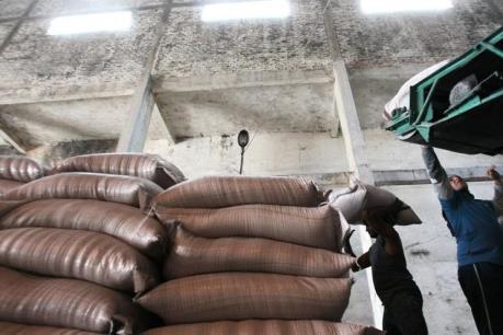 Thái Lan xem xét lại toàn bộ chính sách sản xuất và phân phối đường