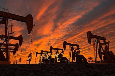 """Thị trường năng lượng lắng lại trước thềm cuộc họp của các """"ông lớn"""" dầu mỏ"""