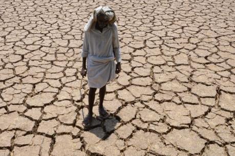 Thế giới vừa trải qua tháng 8 nóng nhất trong lịch sử