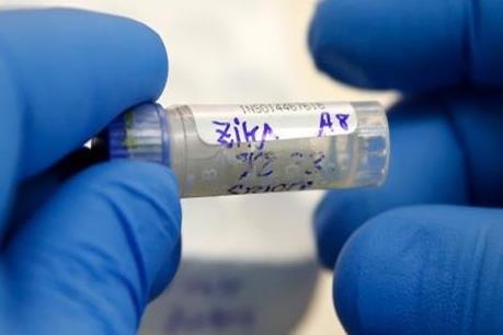 Công bố kết quả thử nghiệm vaccine ngừa Zika trên động vật