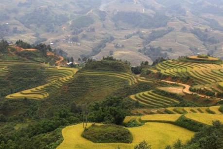 Việt Nam: Điểm đến hấp dẫn du khách Mỹ
