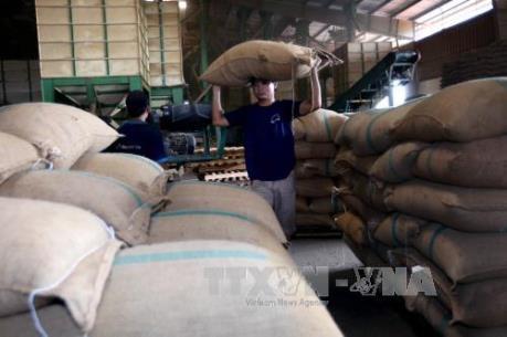 Kim ngạch xuất khẩu nông lâm thủy sản 9 tháng đạt 23,3 tỷ USD