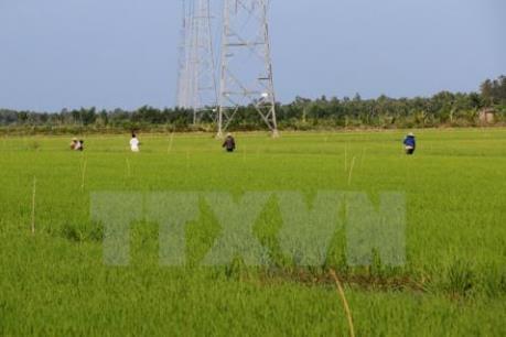 Đầu tư khoảng 1.300 tỷ đồng sản xuất nông nghiệp ứng dụng công nghệ cao