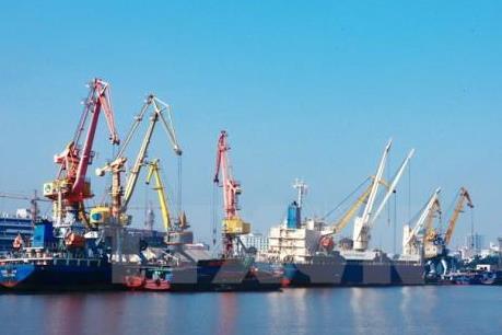 WTO hạ dự báo tăng trưởng thương mại toàn cầu