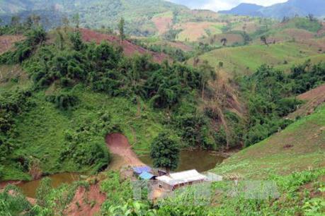 Phản hồi thông tin TTXVN: Điện Biên xác nhận có sai phạm trong cấp hộ khẩu tại Mường Nhé