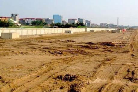 Yêu cầu kiểm tra, làm rõ vi phạm đất đai tại Đông Anh, Hà Nội