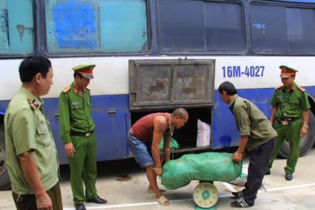 500 kg nội tạng động vật, bì lợn bốc mùi hôi thối bị bắt giữ