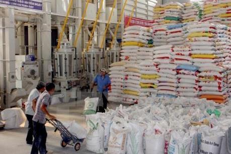 Bàn về tiêu chuẩn quốc gia cho gạo Việt Nam