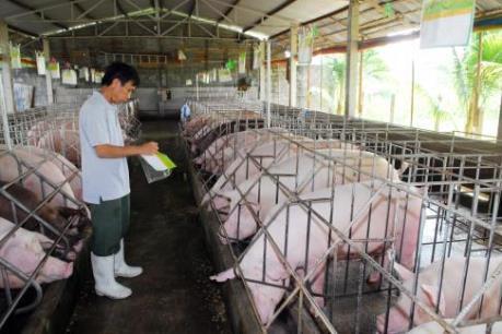 Ra mắt sản phẩm thịt lợn thảo mộc