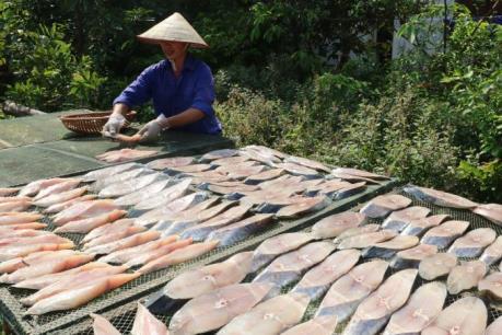 Cá thu một nắng Đồ Sơn: Món quà ẩm thực mặn mòi vị biển