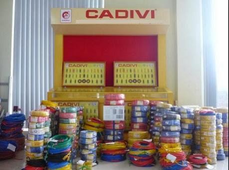Cadivi tăng vốn điều lệ và bầu thay thế thành viên Hội đồng quản trị