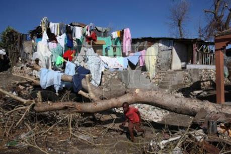 Hơn 1.000 người thiệt mạng do bão Matthew tại Haiti