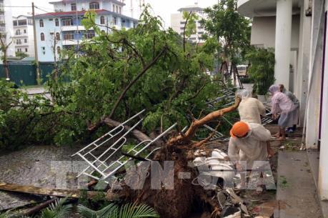 Ảnh hưởng áp thấp nhiệt đới: Mưa to, một số tuyến phố tại Thừa Thiên - Huế bị ngập sâu