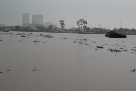 Mực nước sông Đồng Nai lên mức báo động II, cảnh báo nguy cơ ngập lụt