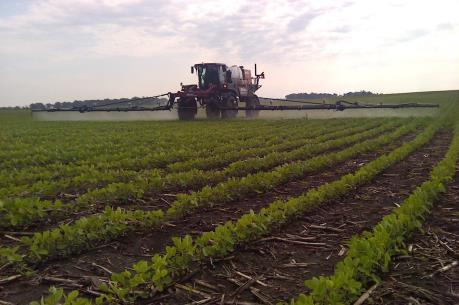 Học gì từ mô hình trang trại rau cộng đồng tại Mỹ?