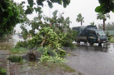Tổng cục Đường bộ yêu cầu các đơn vị chủ động ứng phó với bão số 7