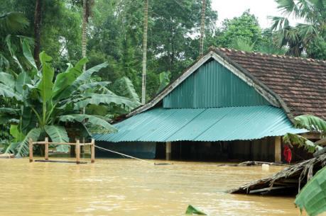 Ảnh hưởng mưa lũ ở miền Trung: Đã cấp điện trở lại cho 2 tỉnh Nghệ An và Thừa Thiên - Huế