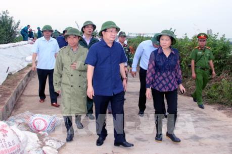 Phó Thủ tướng Trịnh Đình Dũng kiểm tra công tác phòng chống bão số 7 ở Quảng Ninh