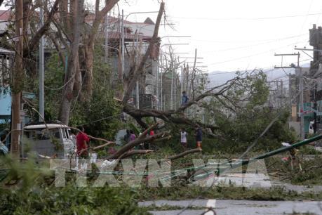Trung Quốc: Siêu bão Haima gây thiệt hại hơn 700 triệu USD